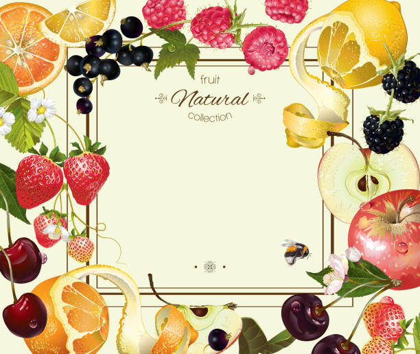 Fruit and berry frame Vector vintage fruit and berry frame. Design for vegetarian menu, tea, ice cream, juice, jam, natural cosmetics, candy and bakery with fruit filling, health care products. With place or text fruit borders stock illustrations