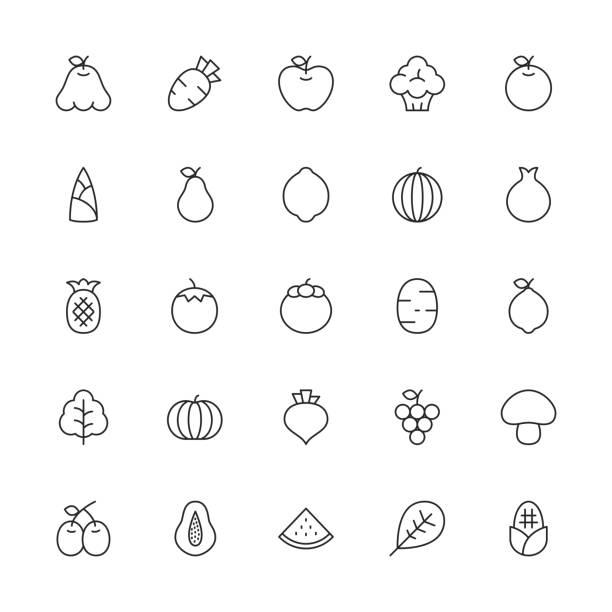 ilustrações, clipart, desenhos animados e ícones de frutas e vegetais ícones - série de linha fina - fruit salad