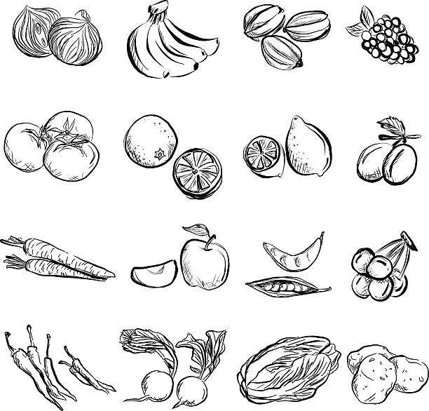 Fruit and vegetable in charcoal sketch style Fruit and vegetable in black and white fruit clipart stock illustrations