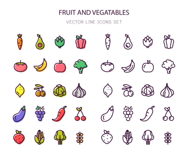 Fruit and vegetables. Organic food. Line icons. Outline stroke. Fruit and vegetables. Organic food. Set of line and colorful icons. Vector. Line icon Outline stroke avocado stock illustrations