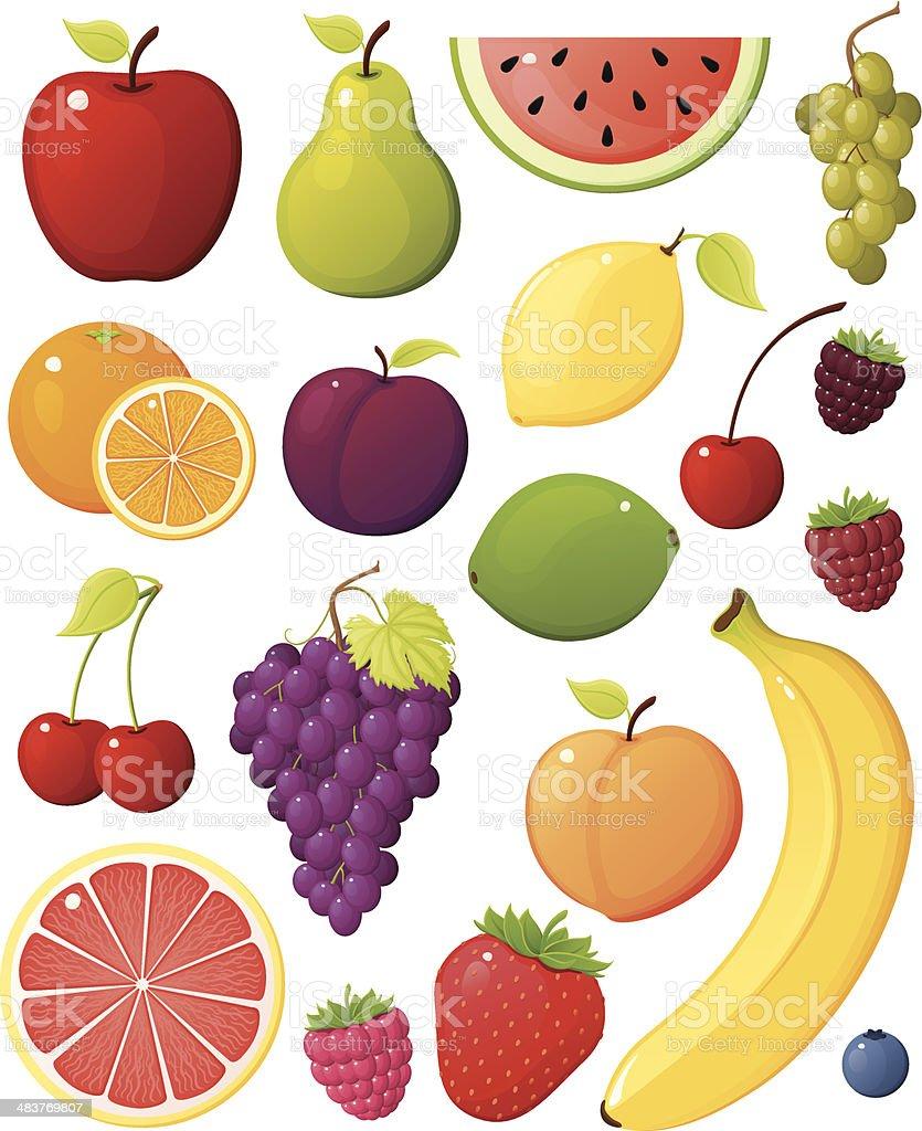 Fruit Assortment vector art illustration