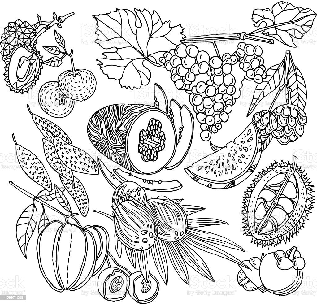 Fruit Background vector art illustration
