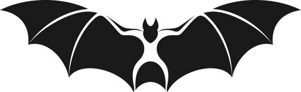 flughund. isolierte fledermaus auf weißem hintergrund - megabat stock-grafiken, -clipart, -cartoons und -symbole