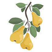 istock fruit branch 1277326365