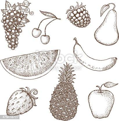 Fruit drawings