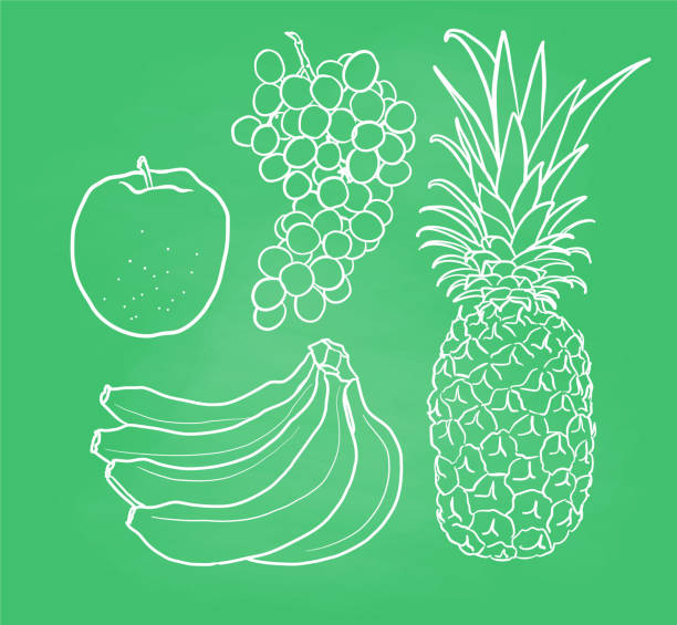 Drawing Of The Black And White Pineapple Illustrations
