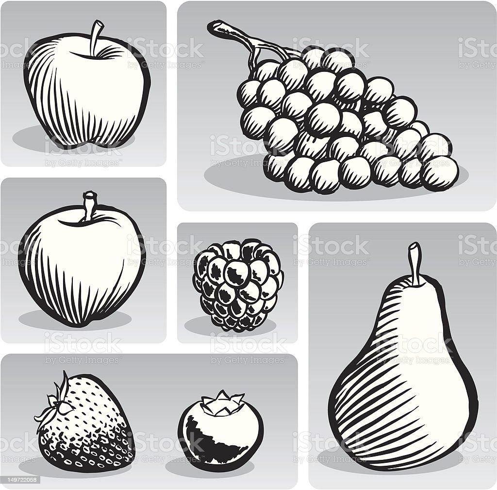 Fruit Group (B & W) royalty-free stock vector art