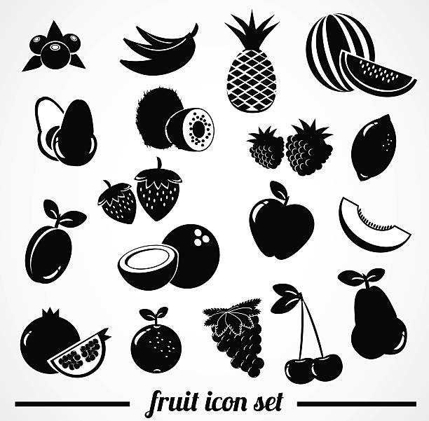 Fruit icon collection. Vector illustration: collection of many fruit icons. avocado silhouettes stock illustrations
