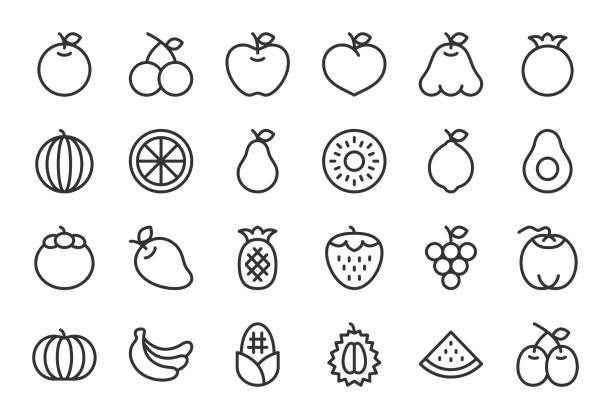 ilustrações, clipart, desenhos animados e ícones de ícone de frutas - série linha clara - fruit salad