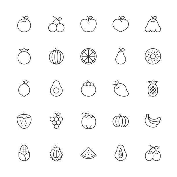 Fruit Icon - Thin Line Series Fruit Icon Thin Line Series Vector EPS File. avocado clipart stock illustrations