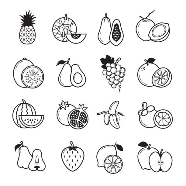 Fruit Icon Fruit Icon, Set Of 16 Fruit Outline Icons. Vector avocado icons stock illustrations