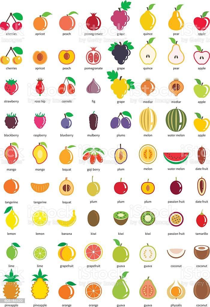 Fruit icons – big set of seventy-two vector icons - ilustración de arte vectorial