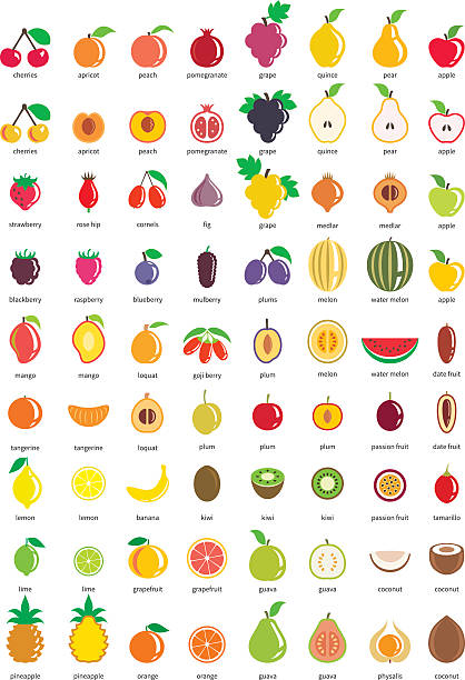 Fruit icons – big set of seventy-two vector icons Multicolored fruit icon set fruit clipart stock illustrations