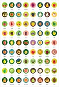 Multicolored fruit icon set