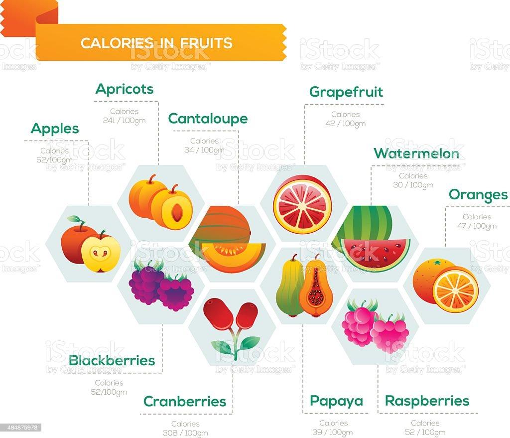 Fruit infographic vector art illustration