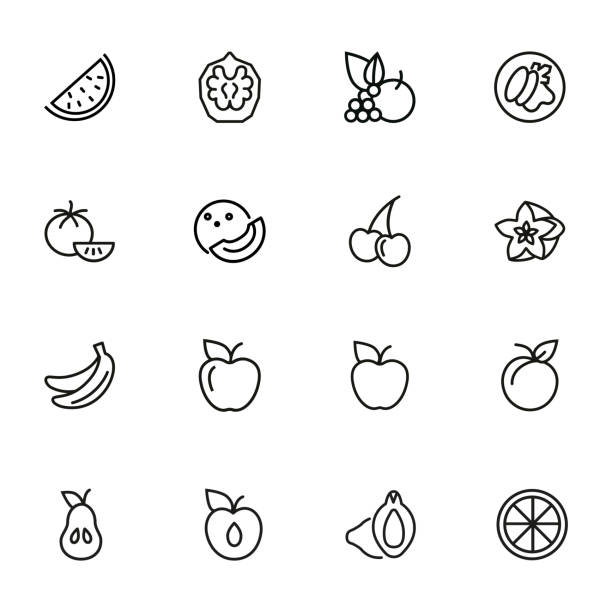 ilustrações, clipart, desenhos animados e ícones de jogo do ícone da linha da fruta - fruit salad