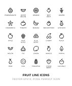 Fruit Line Icons Vector EPS 10 File, Pixel Perfect Icons.