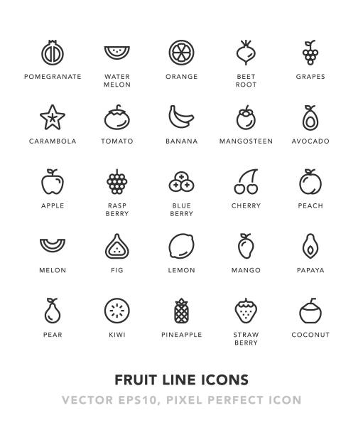 Fruit Line Icons Fruit Line Icons Vector EPS 10 File, Pixel Perfect Icons. berry fruit stock illustrations