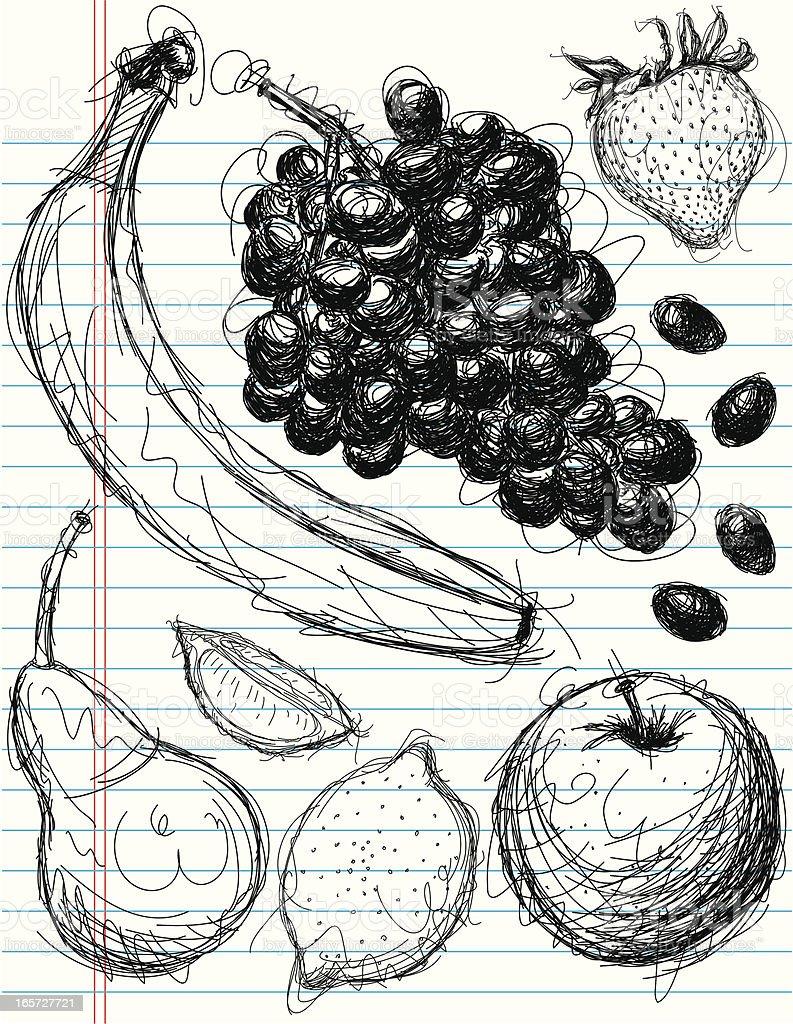 fruit medley sketches royalty-free stock vector art