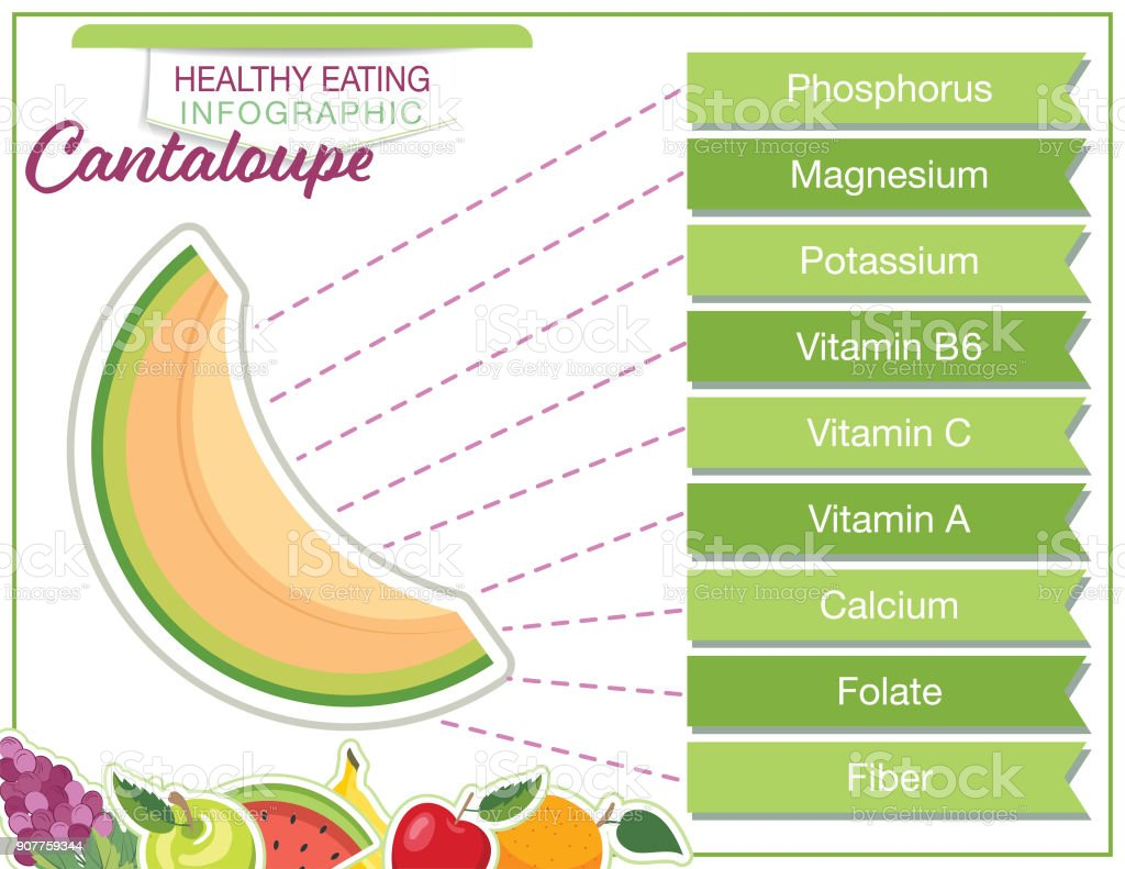 Fruit Nutrition Infographic - Healthy eating vector art illustration