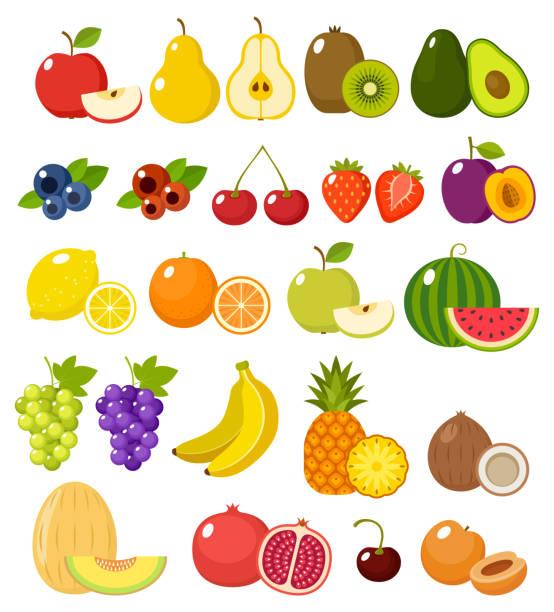 ilustraciones, imágenes clip art, dibujos animados e iconos de stock de fruta sobre fondo blanco aislado - fruta