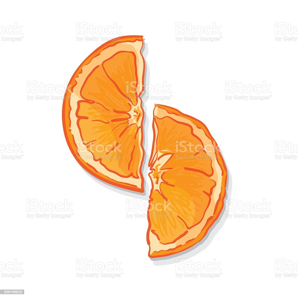 Fruit Orange Drawing Graphic Design Objects Stock Vector Art ... for Drawing Orange Fruit  45ifm