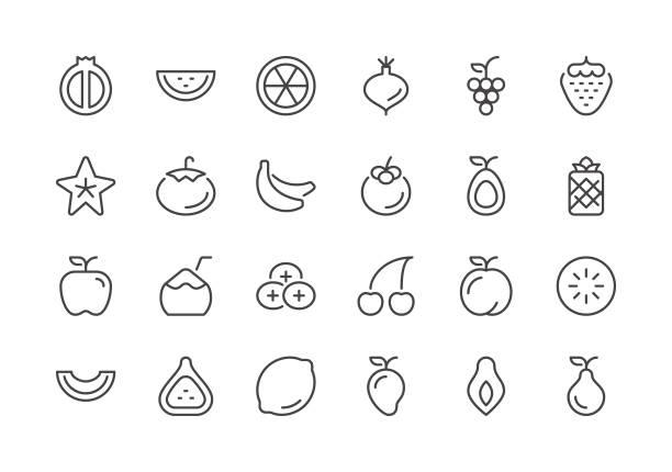 ilustrações, clipart, desenhos animados e ícones de fruta - ícones de linha regular - fruit salad