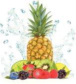 Fruit Splash - Vector Illustration