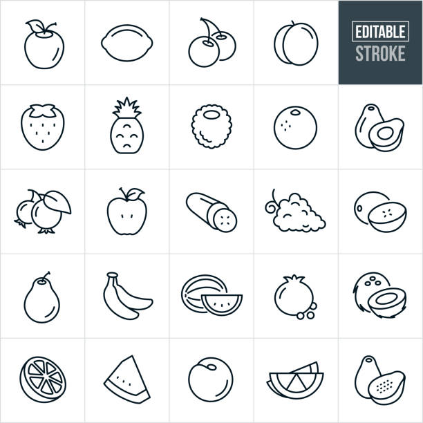 Fruit Thin Line Icons - Editable Stroke A set of fruit icons that include editable strokes or outlines using the EPS vector file. The icons include an apple, lemon, lime, cherries, peach, strawberry, pineapple, raspberry, blackberry, blueberries, orange, avocado, cucumber, grapes, cantaloupe, pear, bananas, watermelon, pomegranate, coconut and papaya. avocado stock illustrations