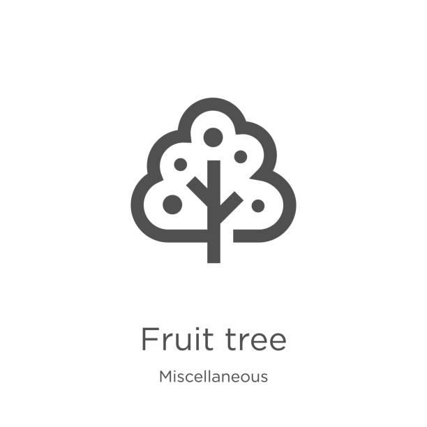 stockillustraties, clipart, cartoons en iconen met fruit tree icon vector uit diverse collectie. dunne lijn vruchtboom overzicht icoon vector illustratie. outline, dunne lijn fruitboom icoon voor website design en mobiele, app ontwikkeling - fruitboom