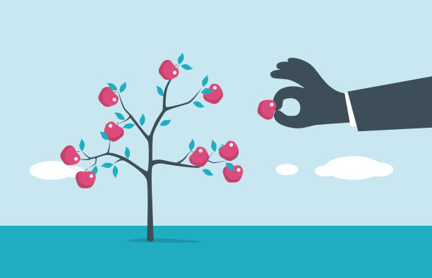 Fruit Tree illustration and painting picking harvesting stock illustrations