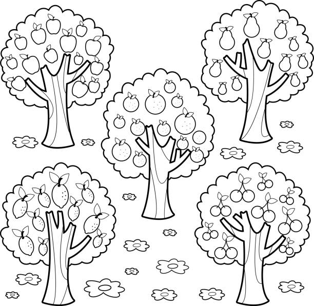 coloring pages fruit trees - photo#11