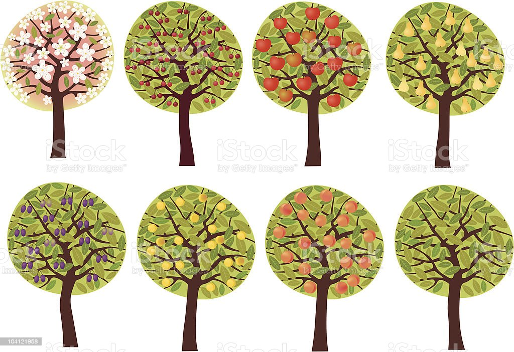 Fruit trees set vector art illustration