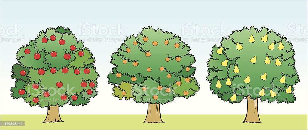 Fruit trees vector art illustration