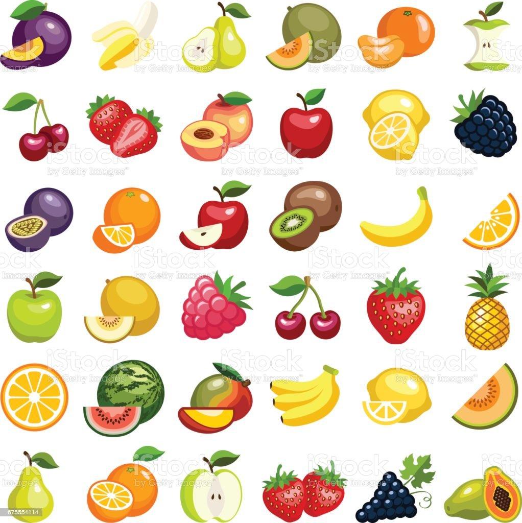Frutas - ilustración de arte vectorial