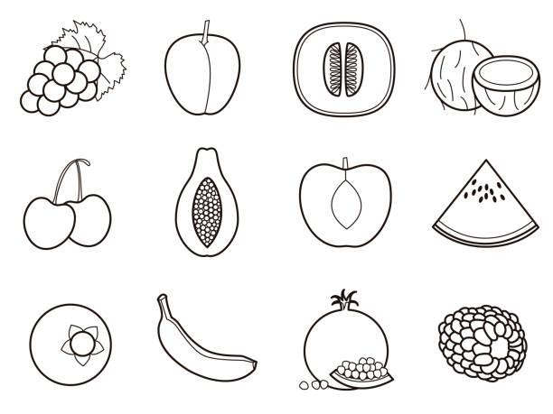 Fruits 2 icon set vector art illustration