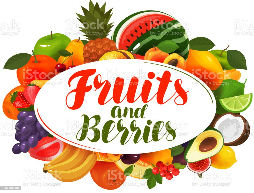 Fruits and berries, banner. Natural food, greengrocery concept. Vector illustration vector art illustration