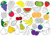 Fruits and berries. Coloring book. Educational game for children. Vector illustration.