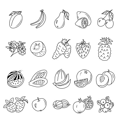 Fruits and Berries Editable Stroke Doodles