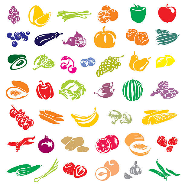Fruits and vegetables collection Fruits and vegetables vector collection. Fruits set. Vegetables set. scallion stock illustrations