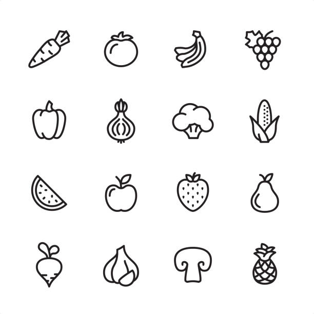 Fruits and Vegetables - outline icon set 16 line black on white icons / Set #59 Pixel Perfect Principle - all the icons are designed in 48x48pх square, outline stroke 2px.  First row of outline icons contains:  Carrot, Tomato, Bananas, Grape icon;  Second row contains:  Bell pepper, Onion, Broccoli, Corn Crop;  Third row contains:  Watermelon, Apple, Strawberry, Pear;   Fourth row contains:  Turnip, Garlic, Champignon, Pineapple. fruit icons stock illustrations