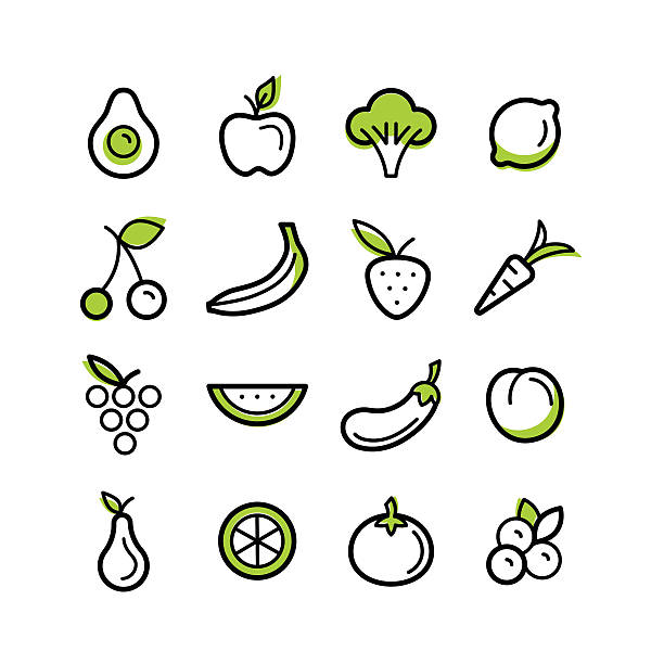 Fruits and vegetables Vector set of icons and illustrations in trendy linear style - healty, organic and vegan food collection - fruits and vegetables on white background avocado patterns stock illustrations