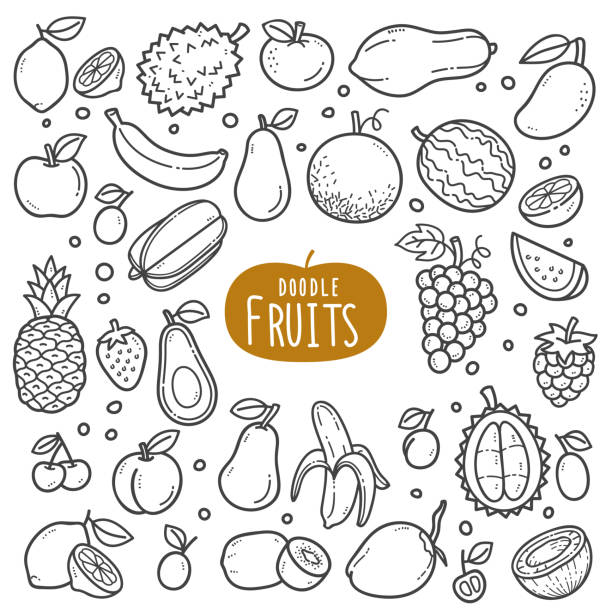 Fruits Black and White Illustration. Fruits doodle drawing collection. fruit such as lemonade, watermelon, pineapple, grapes, coconut, durians etc. Hand drawn vector doodle illustrations in black isolated over white background. avocado clipart stock illustrations