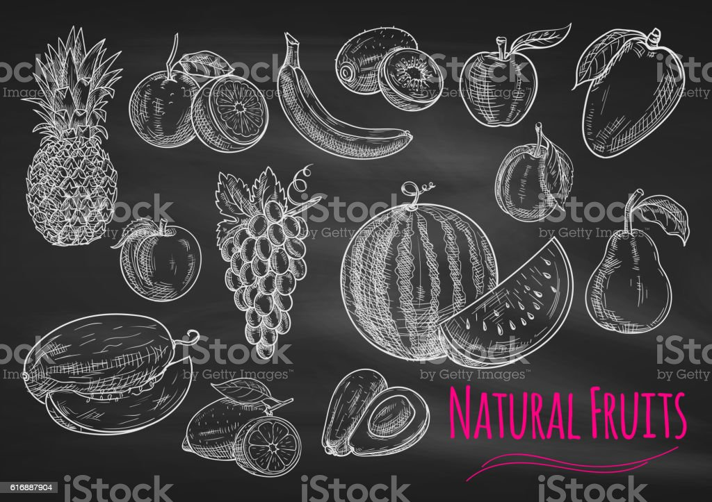 Fruits chalk sketch icons on blackboard vector art illustration