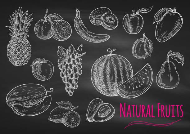 Fruits chalk sketch icons on blackboard Fruits chalk sketch on blackboard. Isolated vector icons of exotic and tropical pineapple, orange, apple, melon, lemon, banana, grape, avocado, watermelon, kiwi, apricot peach mango pear plum avocado drawings stock illustrations