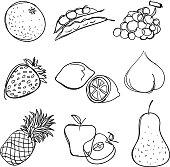 Nine sketch drawing of fruit. It orange, bean, grape, strawberry, lemon, peach, pineapple, apple and pear.