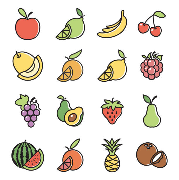 Fruits Design Icon Set Vector illustration of the fruits design icon set on white backgrounds avocado clipart stock illustrations