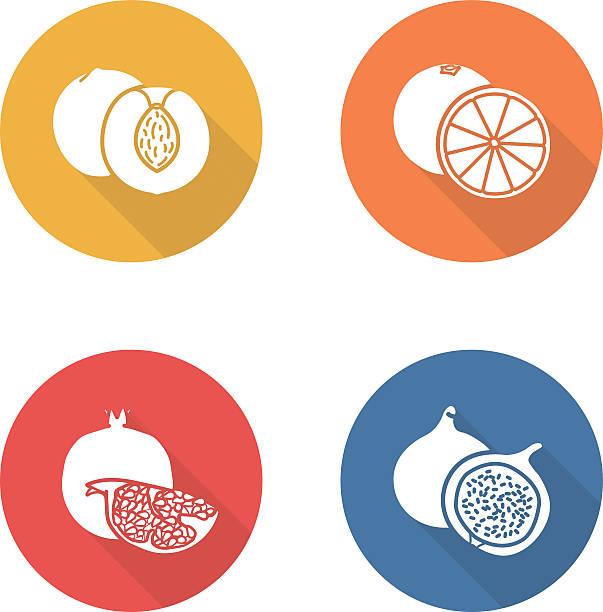 früchte flache design-ikonen-set. half scheiben - feigensalat stock-grafiken, -clipart, -cartoons und -symbole