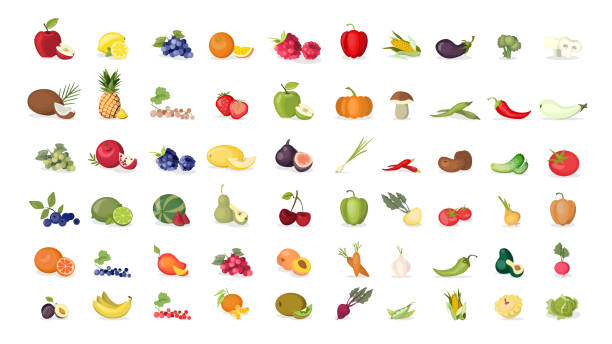 fruits illustrations set on white background. - fruit icon stock illustrations, clip art, cartoons, & icons