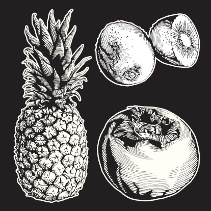Fruits, Ink Drawing